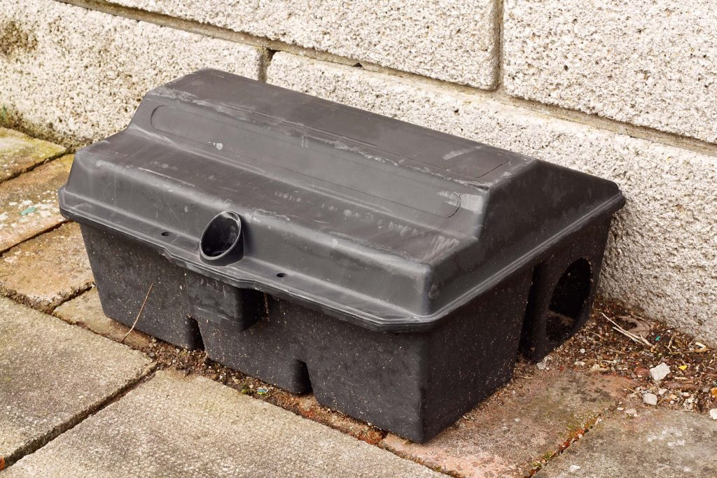 commercial pest control services rodent trap